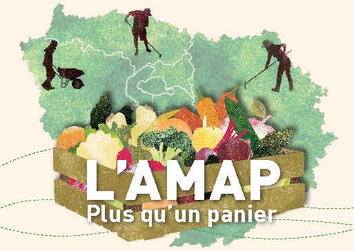 Formations amapiennes et citoyennes pour 2020