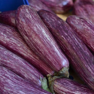 Recette de la semaine : aubergine au pesto